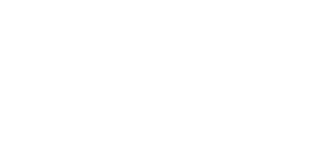 logo fisiopartner