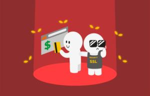 Entenda mais sobre o SSL